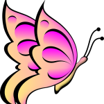 butterfly-34112_960_720